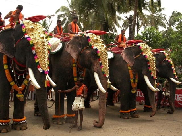 Kerala Elephant Festival